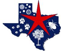 North Texas Allergy & Asthma Associates - Baylor Plano Logo