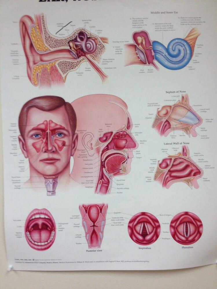 Austin Diagnostic Clinic - Cedar Bend - Urgent Care Solv in Austin, TX