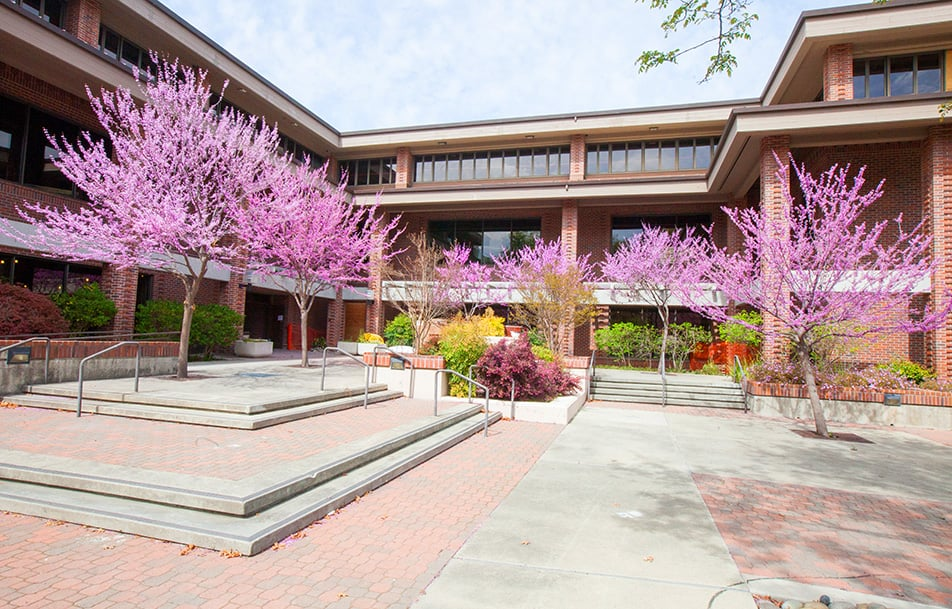 Photo for John Muir Health Urgent Care Center , (Walnut Creek, CA)